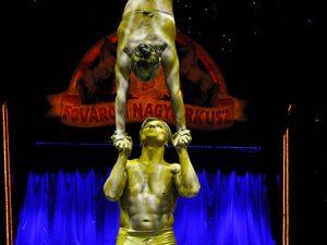 Cirkuszi artista műsor rendelés